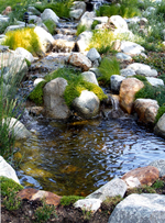 Pond with Waterfall and Stream