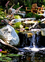 Imagine your favorite mountain retreat as you sit with your mountain stream cascading down a dramatic series of waterfalls ending at a koi pond.