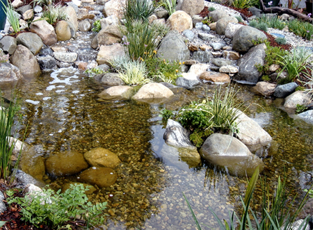 Water garden pond and waterfall supplies for Natural garden pond