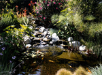 Waterfall with cascading stream into a tropical pond