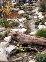 """A driftwood """"bridge"""" makes this waterfall and stream spectacular."""