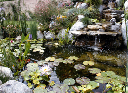 Mr adam landscaping fountain kits for Pond equipment near me